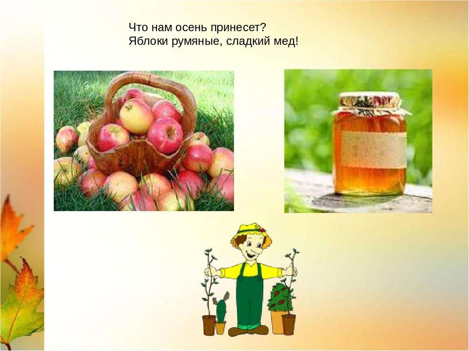 Что нам осень принесет? Яблоки румяные, сладкий мед!