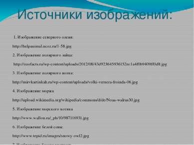 Источники изображений: 1. Изображение северного оленя: http://helpanimal.ucoz...