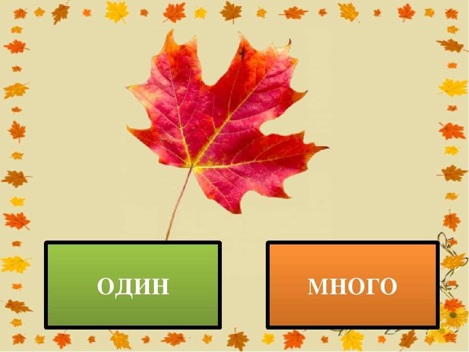 ОДИН МНОГО