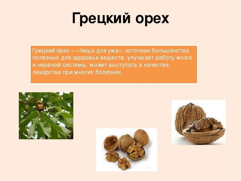 Грецкий орех Грецкий орех – «пища для ума», источник большинства полезных для...