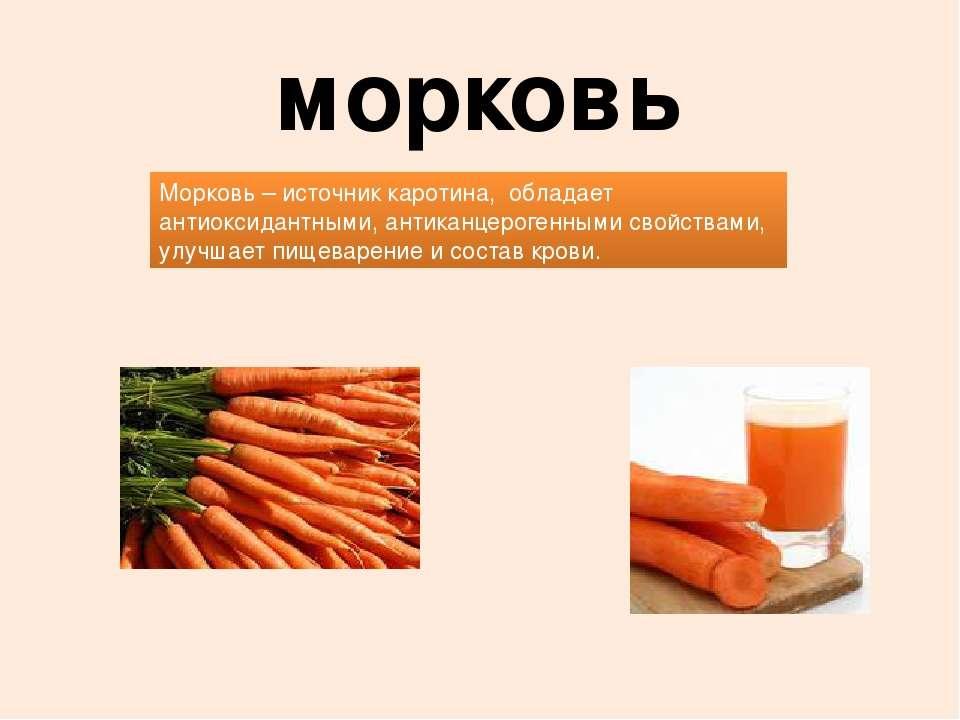 морковь Морковь – источник каротина, обладает антиоксидантными, антиканцерог...