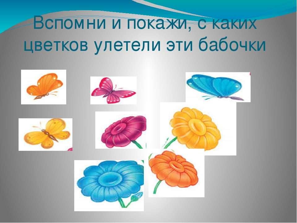 Вспомни и покажи, с каких цветков улетели эти бабочки