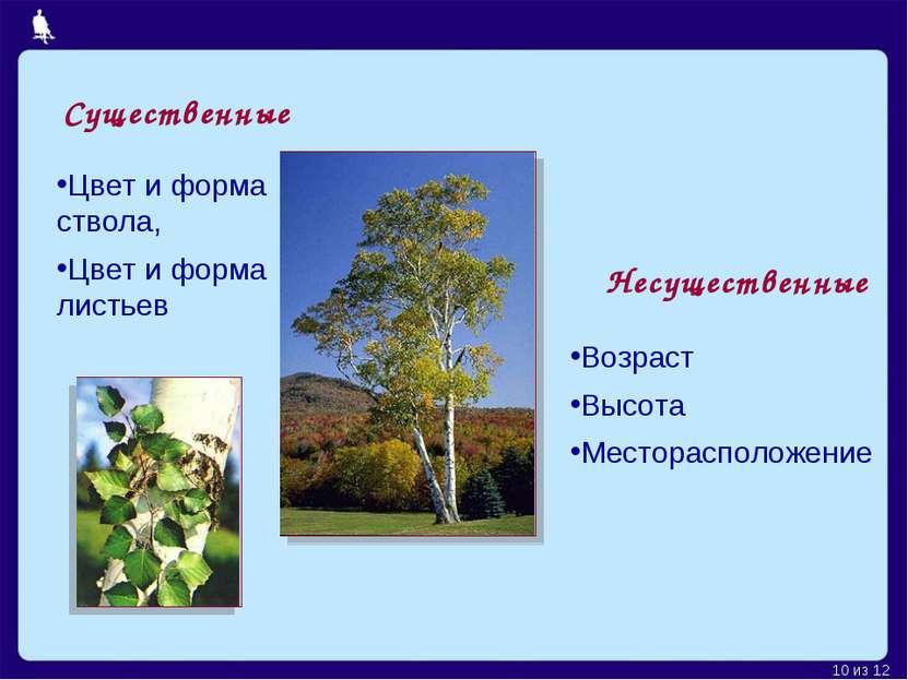 Существенные Цвет и форма ствола, Цвет и форма листьев Несущественные Возраст...