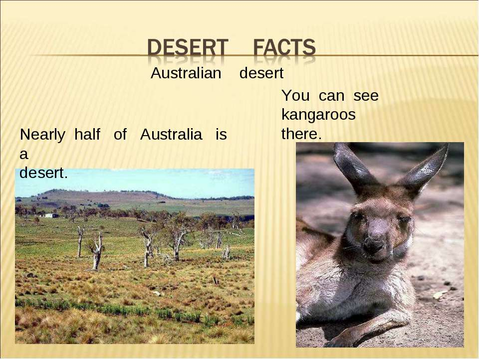 Aus Australian desert Nearly half of Australia is a desert. You can see kanga...
