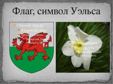 Флаг, символ Уэльса