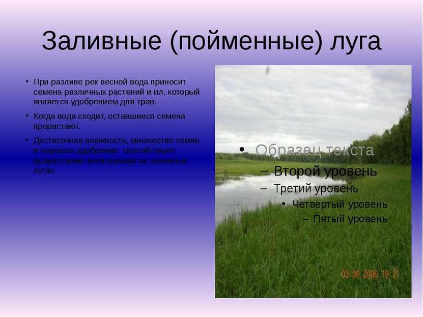 Заливные (пойменные) луга При разливе рек весной вода приносит семена различн...