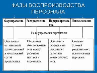 ФАЗЫ ВОСПРОИЗВОДСТВА ПЕРСОНАЛА
