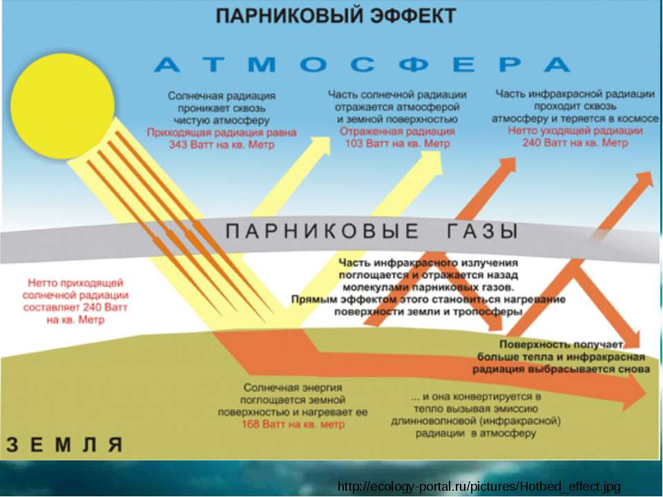 http://ecology-portal.ru/pictures/Hotbed_effect.jpg