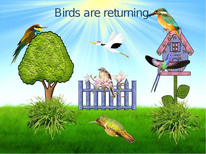 Birds are returning.