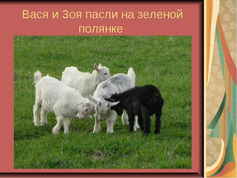 Вася и Зоя пасли на зеленой полянке