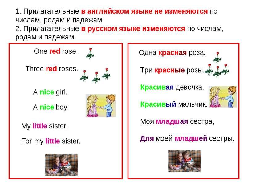 1. Прилагательные в английском языке не изменяются по числам, родам и падежам...