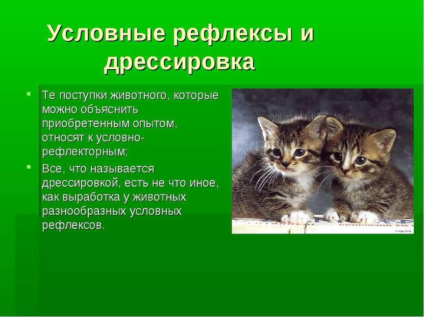 Условные рефлексы и дрессировка Те поступки животного, которые можно объяснит...
