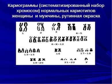 Кариограммы (систематизированный набор хромосом) нормальных кариотипов женщин...