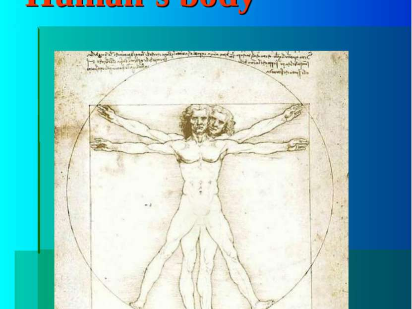 """Human's body The word """"body"""""""