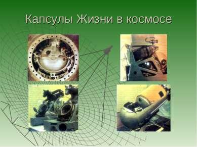 Капсулы Жизни в космосе