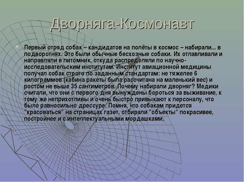 Дворняга-Космонавт Первый отряд собак – кандидатов на полёты в космос – набир...