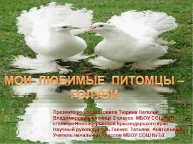 Презентацию подготовила Тюрина Наталья Владимировна ученица 2 класса МБОУ СОШ...