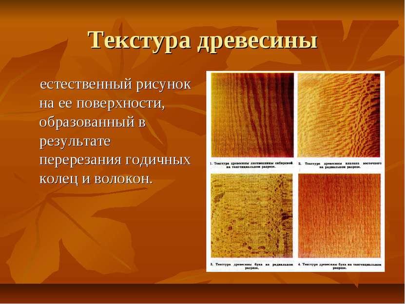 Текстура древесины естественный рисунок на ее поверхности, образованный в рез...