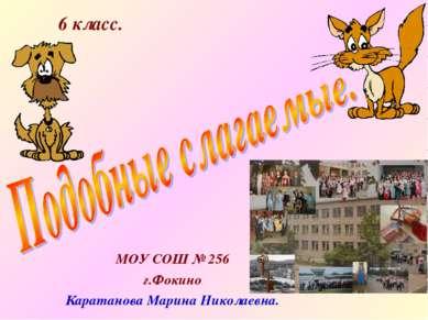 МОУ СОШ № 256 г.Фокино Каратанова Марина Николаевна. 6 класс.