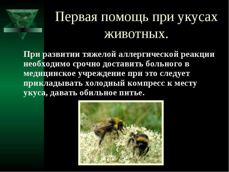 Первая помощь при укусах животных. При развитии тяжелой аллергической реакции...