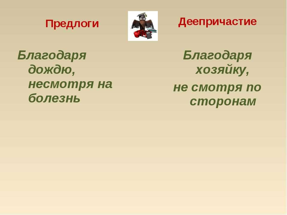 Предлоги Благодаря дождю, несмотря на болезнь Деепричастие Благодаря хозяйку,...