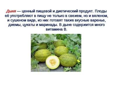 Дыня — ценный пищевой и диетический продукт. Плоды её употребляют в пищу не т...