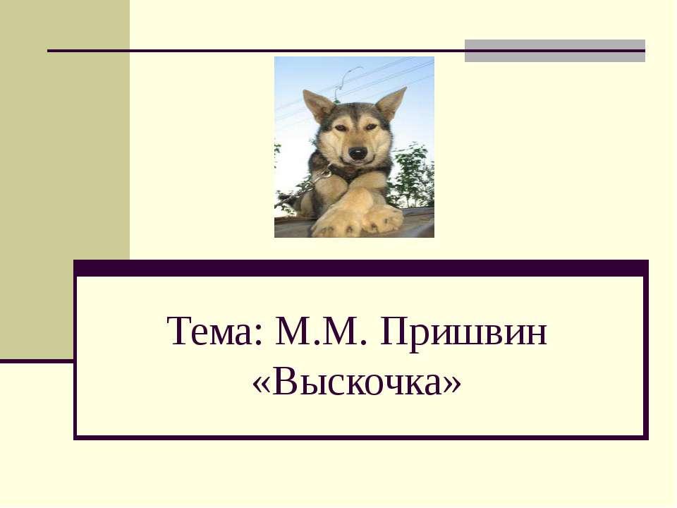 Тема: М.М. Пришвин «Выскочка»