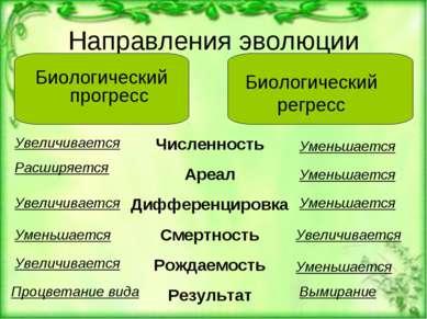 Направления эволюции Биологический прогресс Биологический регресс Численность...
