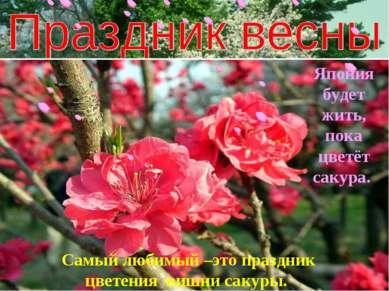 Самый любимый –это праздник цветения вишни сакуры. Япония будет жить, пока цв...