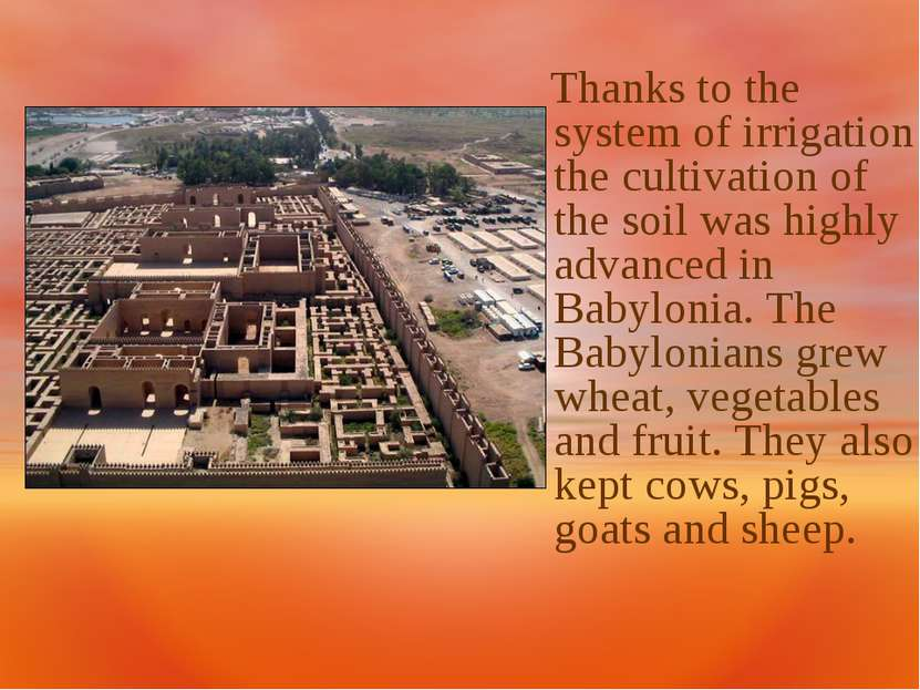 Thanks to the system of irrigation the cultivation of the soil was highly adv...