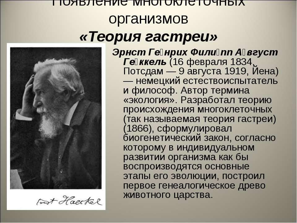 Появление многоклеточных организмов «Теория гастреи» Эрнст Ге нрих Фили пп А ...