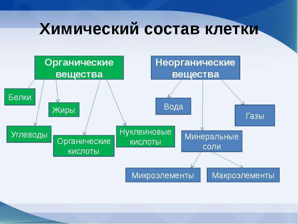 Химический состав клетки Органические вещества Неорганические вещества Белки ...