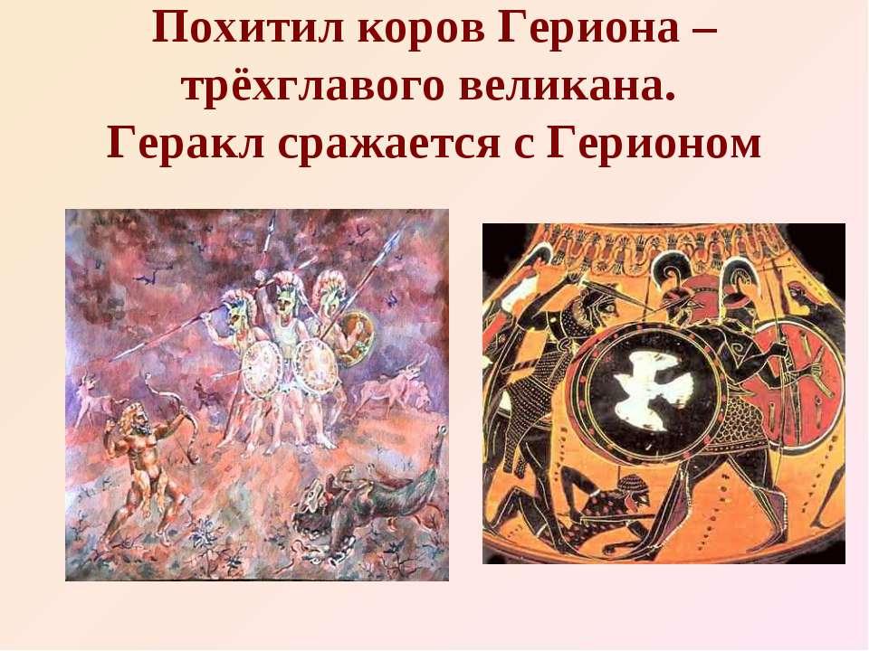 Похитил коров Гериона – трёхглавого великана. Геракл сражается с Герионом