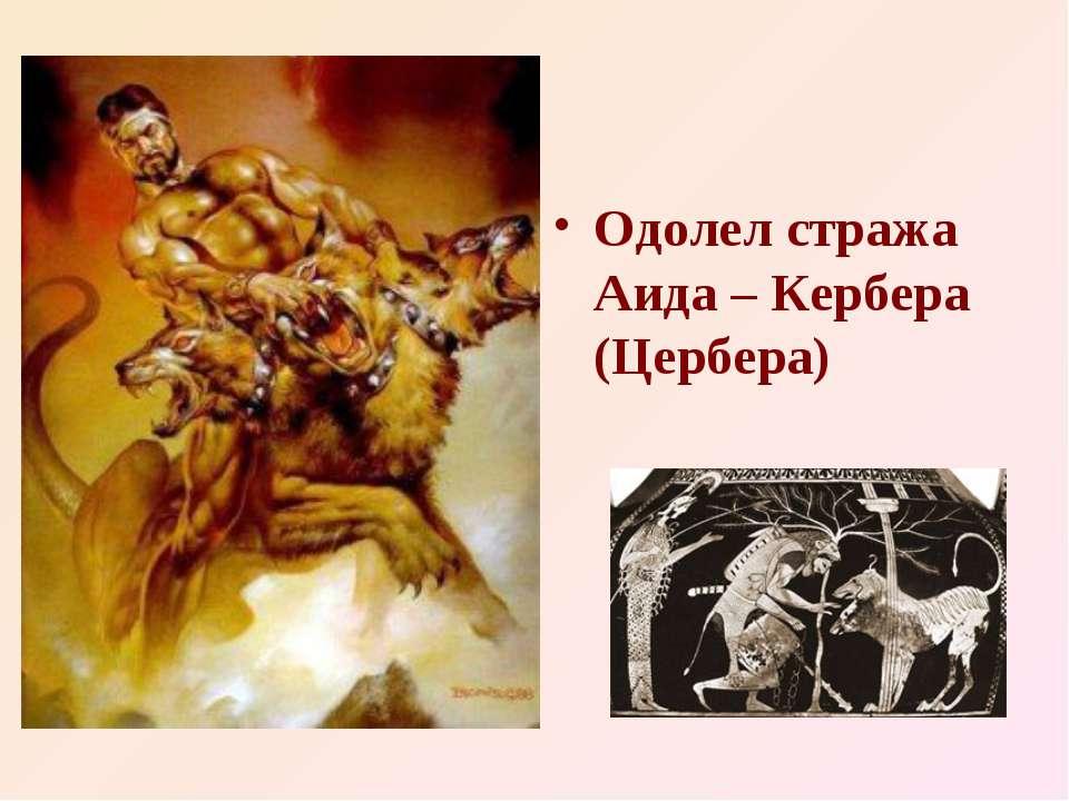 Одолел стража Аида – Кербера (Цербера)