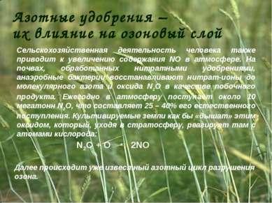Азотные удобрения – их влияние на озоновый слой Сельскохозяйственная деятельн...