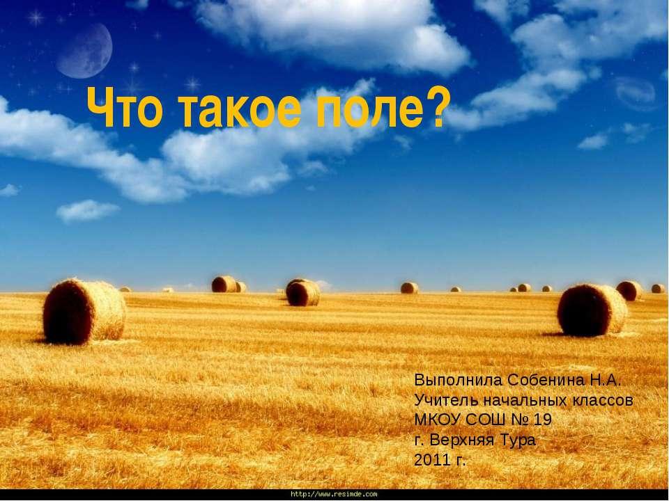 Что такое поле? Выполнила Собенина Н.А. Учитель начальных классов МКОУ СОШ № ...