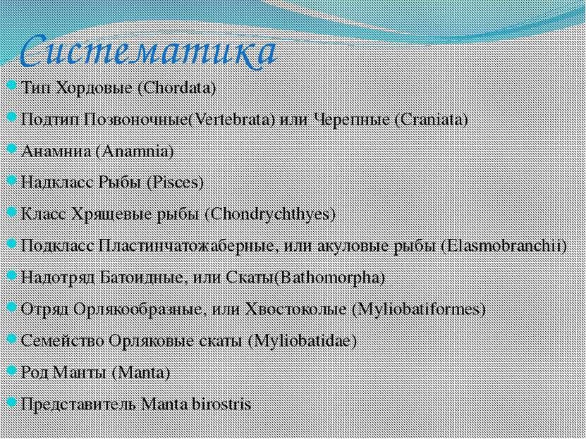 Систематика Тип Хордовые (Chordata) Подтип Позвоночные(Vertebrata) или Черепн...