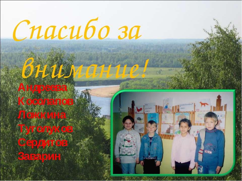 Спасибо за внимание! Андреева Косолапов Ложкина Туголуков Сердитов Заварин