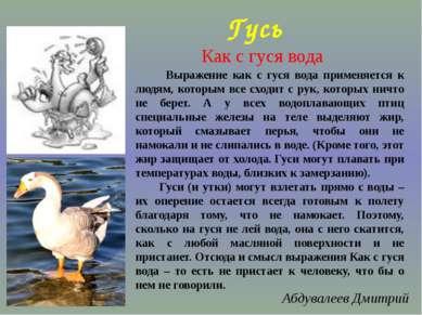 Гусь Выражение как с гуся вода применяется к людям, которым все сходит с рук,...