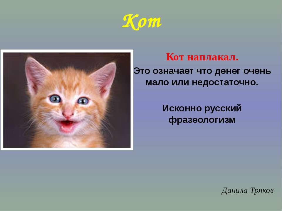 Кот Кот наплакал. Это означает что денег очень мало или недостаточно. Исконно...