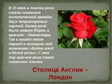 В 15 веке в Англии роза стала символом политической вражды двух непримиримых ...
