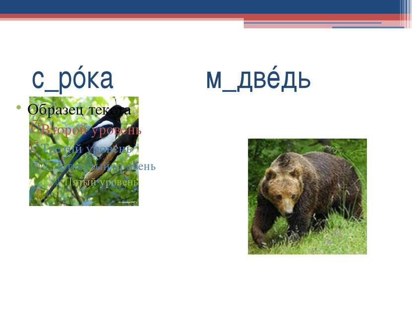 с_рóка м_двéдь