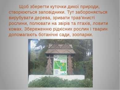 Щоб зберегти куточки дикої природи, створюються заповідники. Тут забороняєтьс...