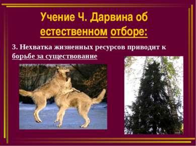 Учение Ч. Дарвина об естественном отборе: 3. Нехватка жизненных ресурсов прив...