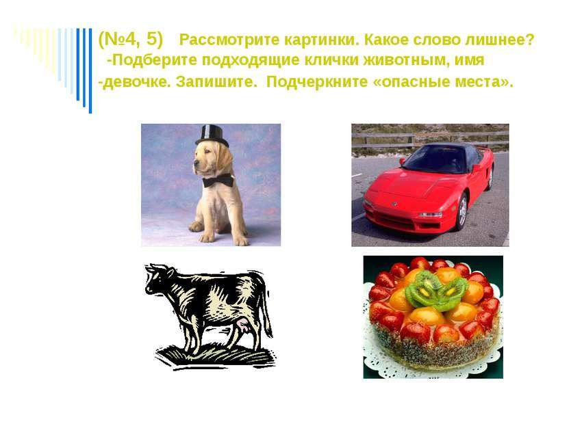 (№4, 5) Рассмотрите картинки. Какое слово лишнее? -Подберите подходящие кличк...