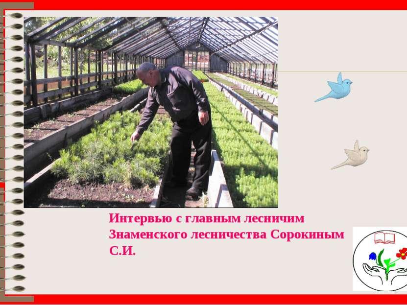 Интервью с главным лесничим Знаменского лесничества Сорокиным С.И.