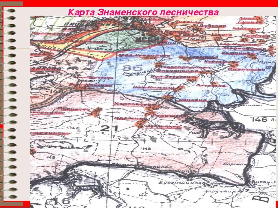 Карта Знаменского лесничества