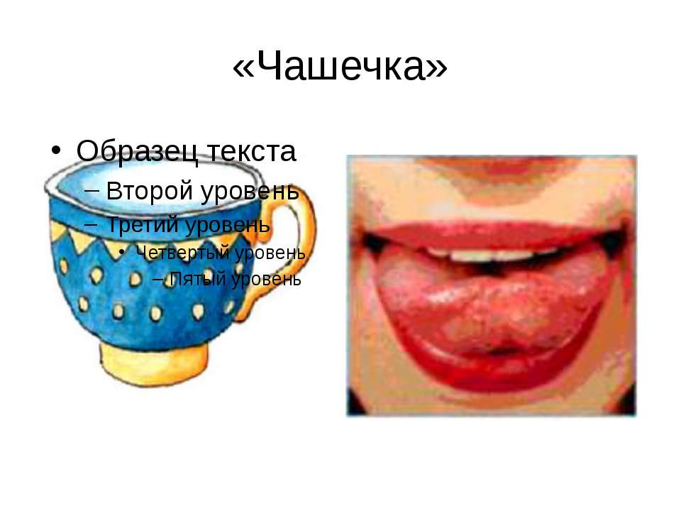 «Чашечка»