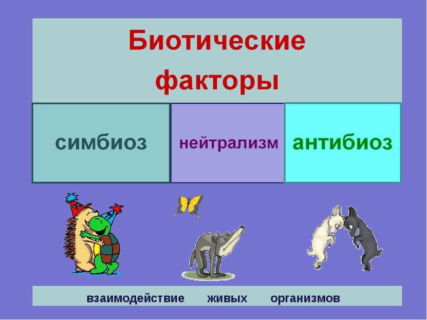 взаимодействие живых организмов