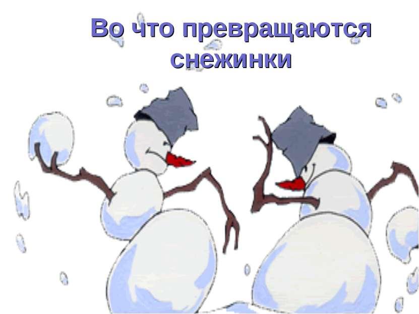 Во что превращаются снежинки